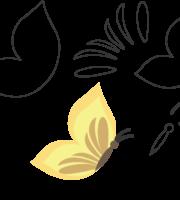 Molde de Borboleta para Eva, Feltro e Artesanatos