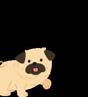 Molde de Cachorro para Eva- Feltro e Artesanatos