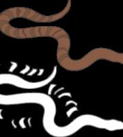 Molde de Cobra para EVA - Feltro e Artesanatos 3