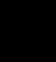 Molde de Coelho para Eva - Feltro e Artesanatos