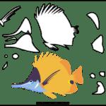 Molde de Peixe para Feltro – EVA e Artesanato 5