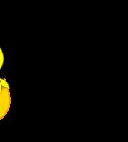 Molde de Pintinho para EVA - Feltro e Artesanato