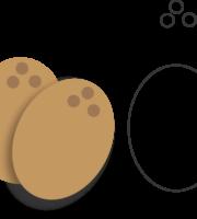 Molde de Coco para EVA - Feltro e Artesanatos1