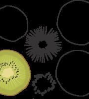 Molde de Kiwi para EVA - Feltro e Artesanatos1.1