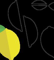 Molde de Limão para EVA - Feltro e Artesanatos1