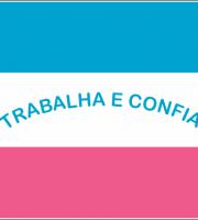 BANDEIRA DO BRASIL - DO ESTADO DO ESPIRITO SANTO EM VETOR, JPG, PNG, EDITAVEL 08