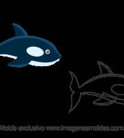 Molde Fundo do Mar - Orca - Molde para EVA - Feltro e Artesanato
