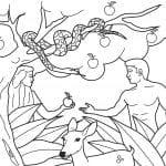 Desenhos Bíblicos para Colorir Adão e Eva