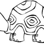 Desenhos Para Colorir Tartarugas