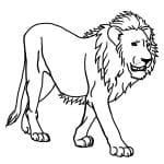Desenhos para Colorir de Animais Leão