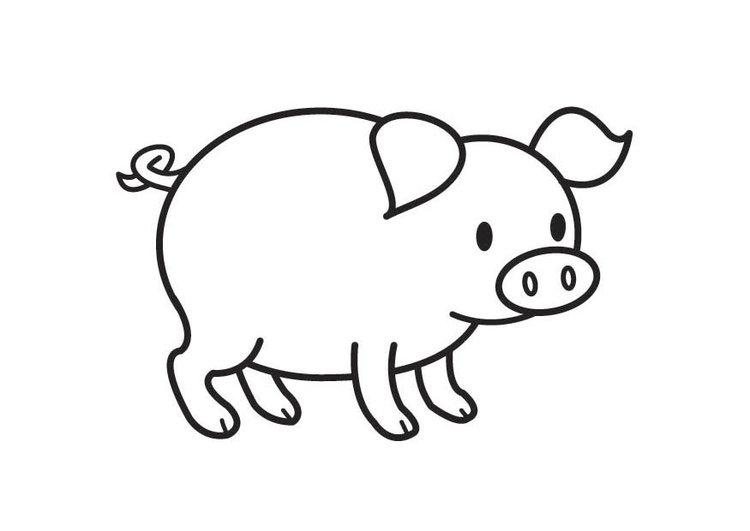 Desenhos para colorir de animais porco for Maialino disegno per bambini