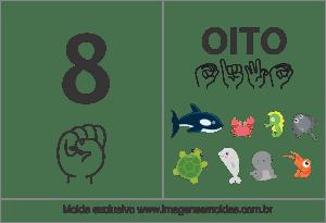 Imagens de Números em Libras Número 8