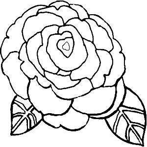 desenhos para colorir flor