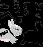 Molde animal, coelho para eva, feltro e artesanato