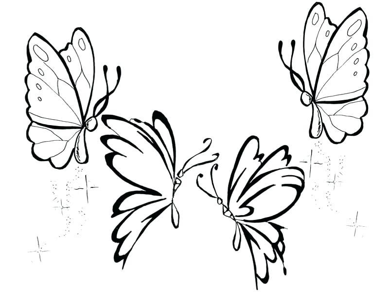 desenhos para colorir borboletas