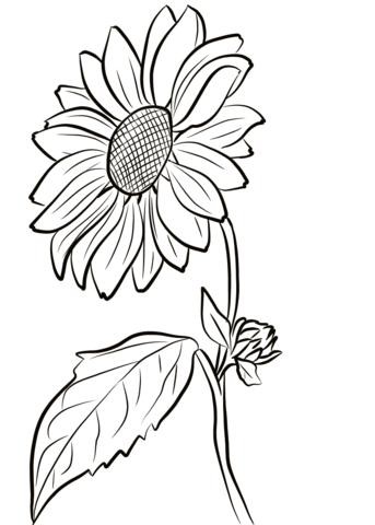 Town Coloring Pages