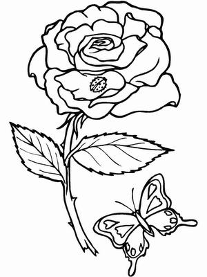 desenhos para colorir flores e buquÊs
