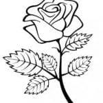 Flor Vetorizada