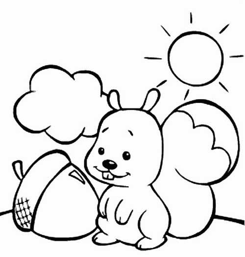 desenhos para colorir esquilo lindo e fofo