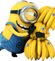 Meu Malvado Favorito - Minions e as Bananas
