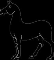 Molde Cavalo 2 Princesa Cinderela Vetor e PNG