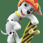 Patrulha Canina – Marshall 3 PNG