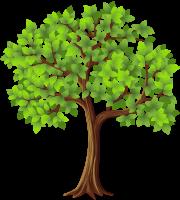Árvores - Árvore 2
