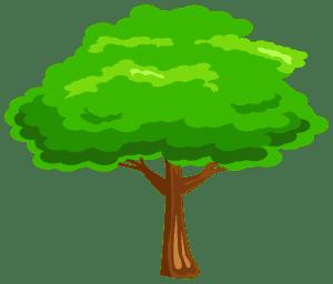 Árvores - Árvore 6