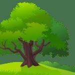 Árvores – Árvore 7 PNG