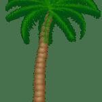 Árvores – Coqueiro 2 PNG