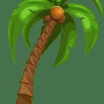 Árvores – Coqueiro 4 PNG