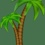 Árvores – Coqueiro 5 PNG