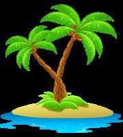 Árvores - Coqueiro 7