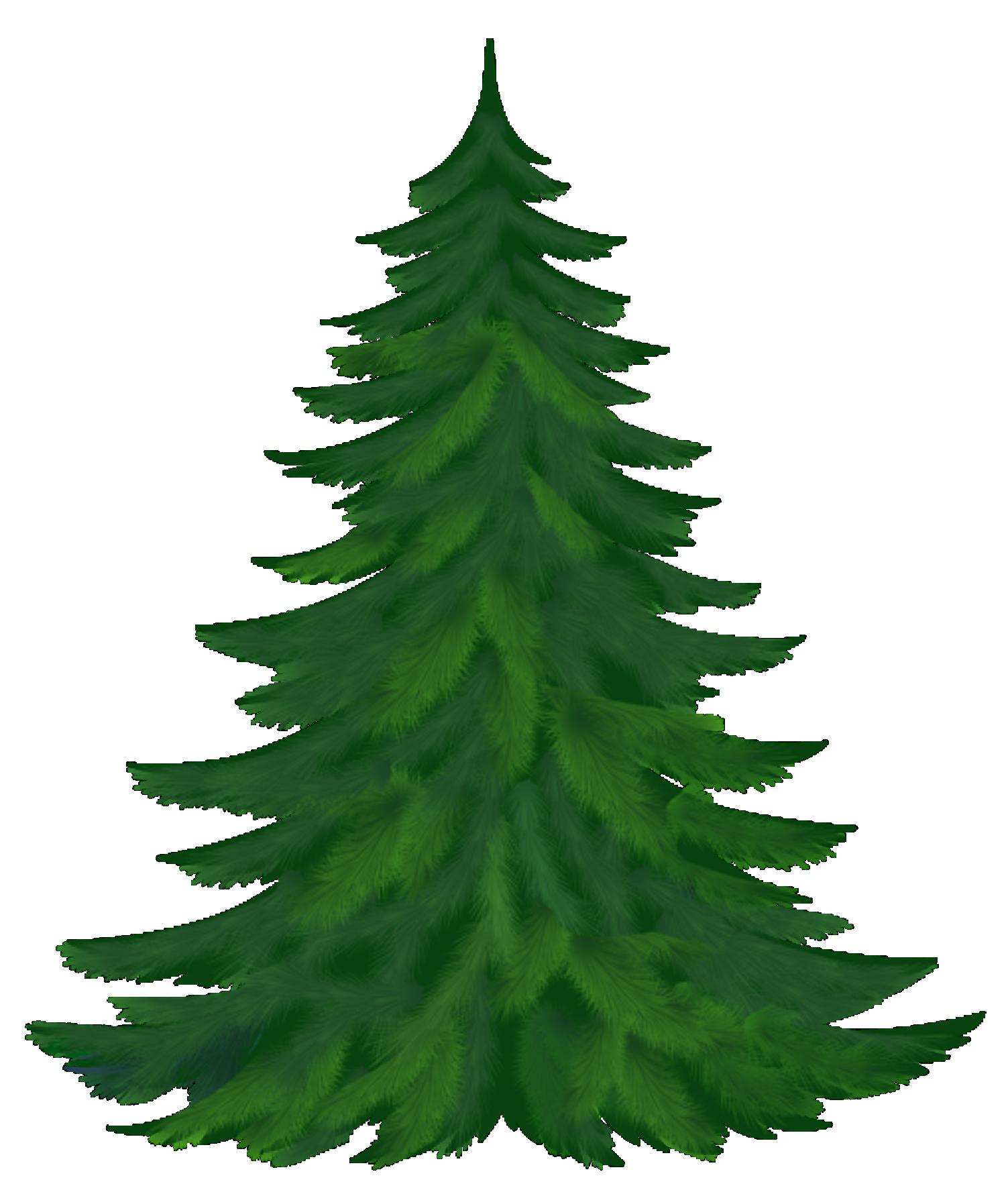 Árvores pinheiro 2 png imagens e moldes com br pinheiros