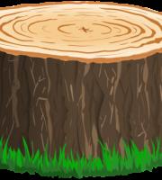 Árvores - Tronco de Árvore 2