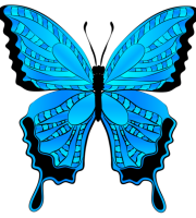 Borboletas - Borboleta Azul e Preto