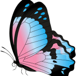 Borboletas – Borboleta Azul e Rosa PNG