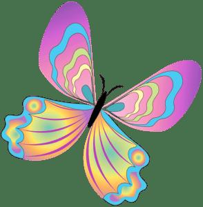 Borboletas - Borboleta Bonita Colorida 10
