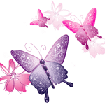 Borboletas – Borboleta Bonita Colorida 12 PNG