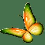 Borboletas – Borboleta Bonita Colorida 13 PNG