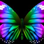 Borboletas – Borboleta Bonita Colorida 5 PNG