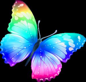 Borboletas - Borboleta Bonita Colorida 8
