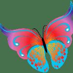Borboletas – Borboleta Bonita Colorida 9 PNG