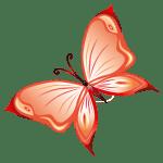 Borboletas – Borboleta Laranja PNG