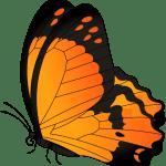Borboletas – Borboleta Laranja e Preta 2 PNG
