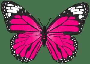 Borboletas - Borboleta Rosa e Preta 3