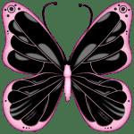Borboletas – Borboleta Rosa e Preta PNG