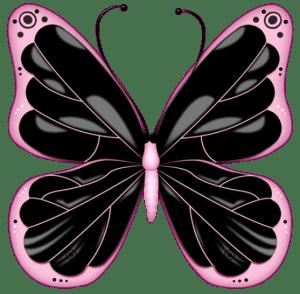 Borboletas - Borboleta Rosa e Preta