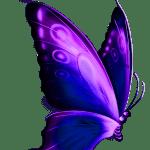 Borboletas – Borboleta Roxa e Preta 5 PNG