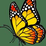 Borboletas – Borboleta Tons de Laranja e Preto PNG